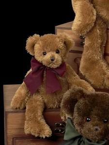 Baby Beauregard Bear