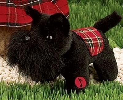 MacDougal Dog